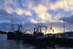 Port Ellen Harbour - Fishing boats
